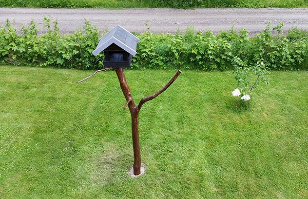 fuglebrett i hagen